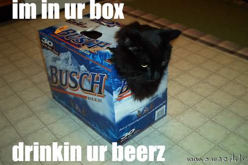 Im in ur box drinkin ur beerz