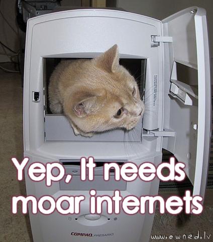 Moar internets