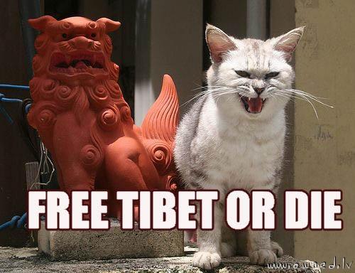 Free Tibet or die