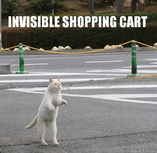 Invisible shopping cart