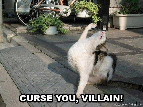 Curse you !