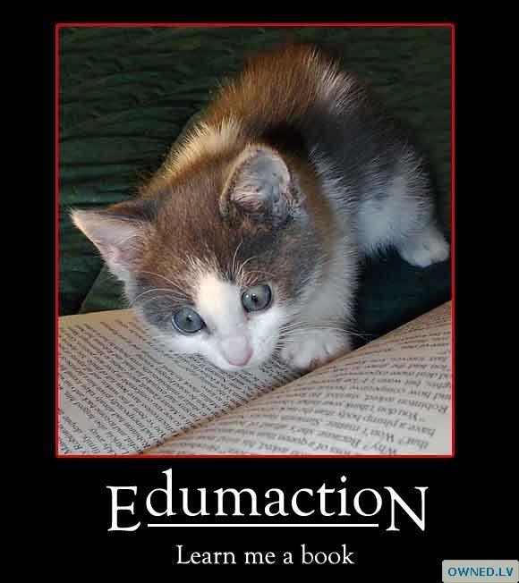edumaction!!
