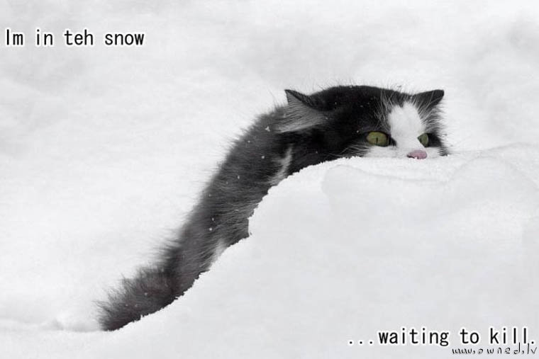 Im in teh snow ...