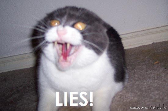 Lies ! It's all lies !!!