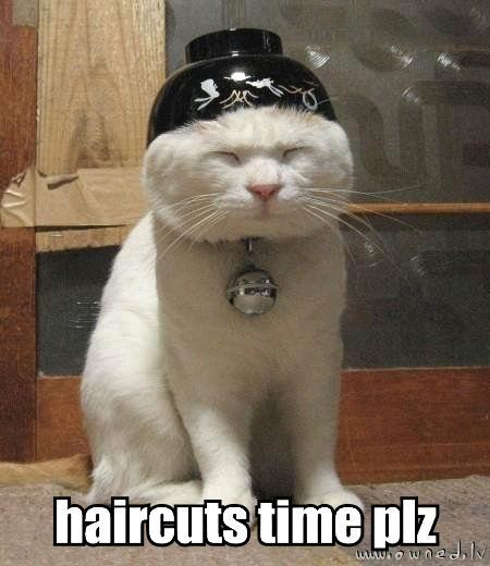 Haircuts time