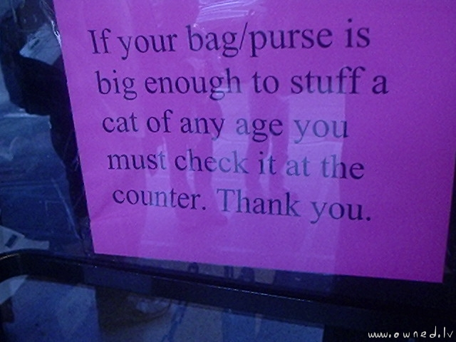 Size of your bag or purse