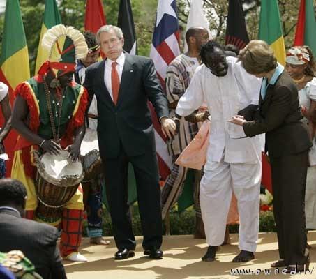 Bush : Zombie's dance