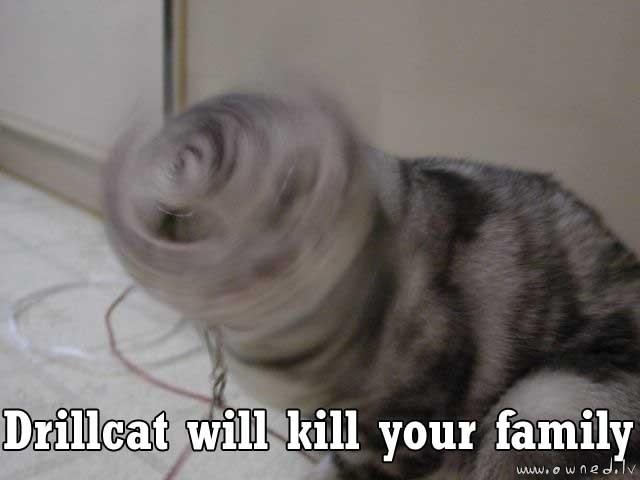 Drillcat