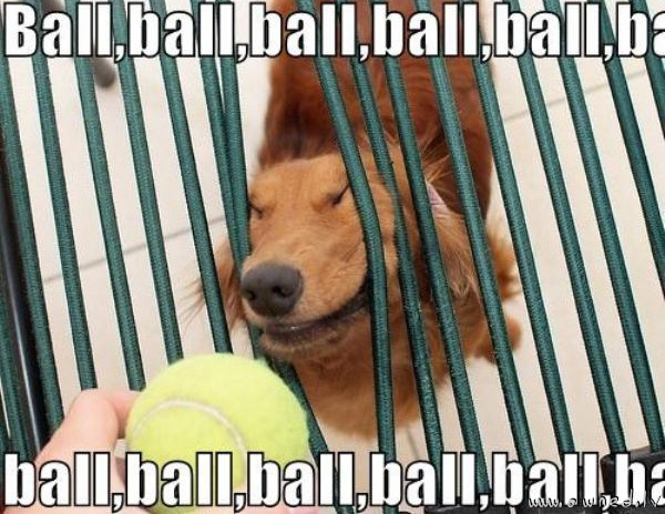 Ball ball ball ball