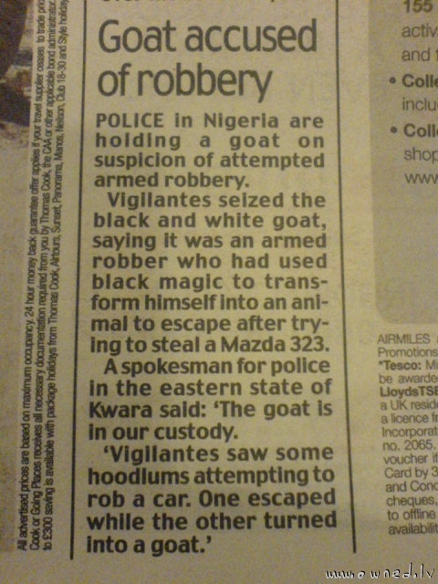 Goat accused of robbery