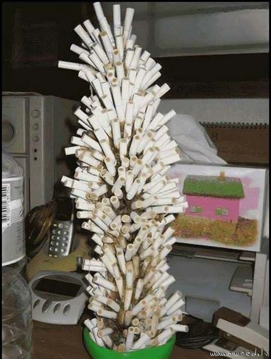 Cigarette tree