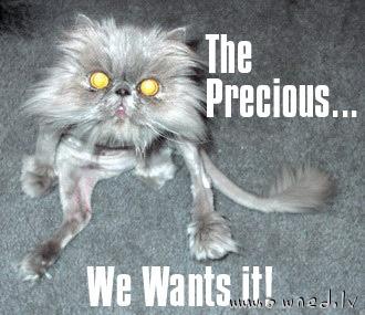 The Precious ...