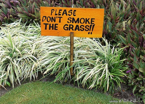Please dont smoke the grass