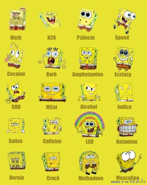 Sponge Bob on drugs