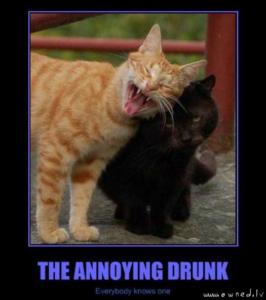 The annoying drunk