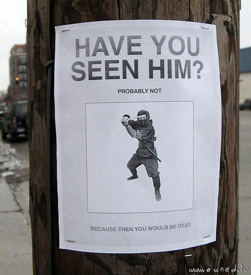 Have you seen him ?