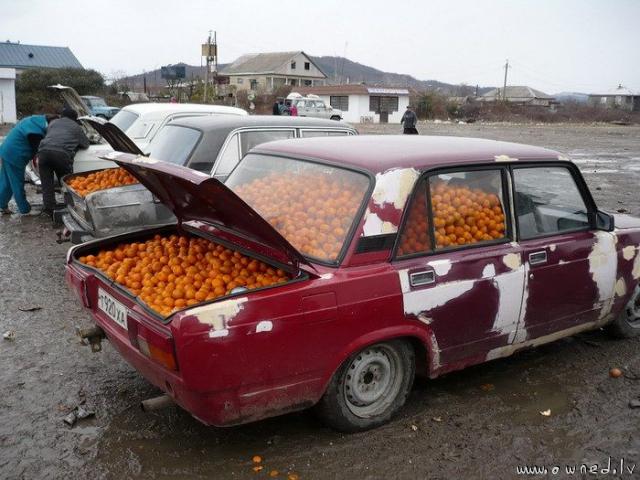 Ghetto truck