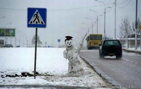 Snowcop