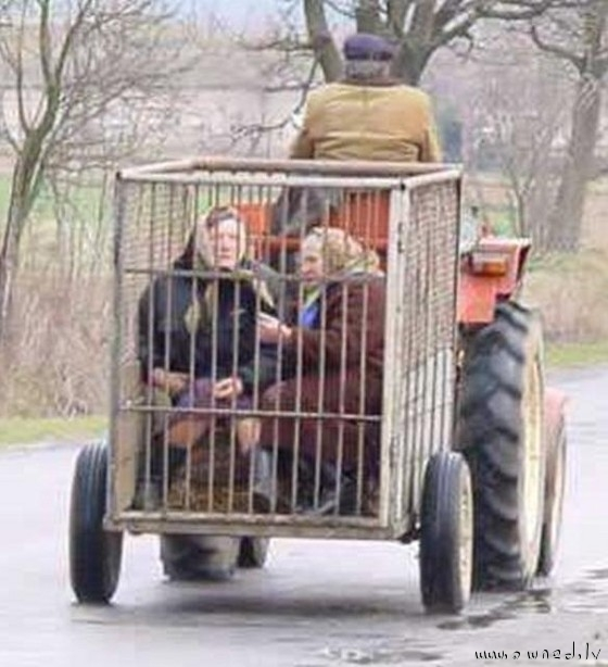 Local transport