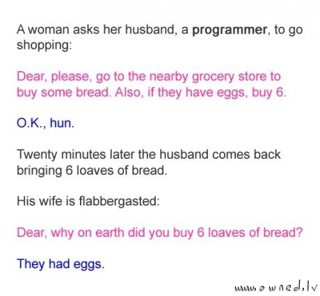 A programmer joke