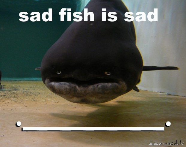 Sad fish is sad