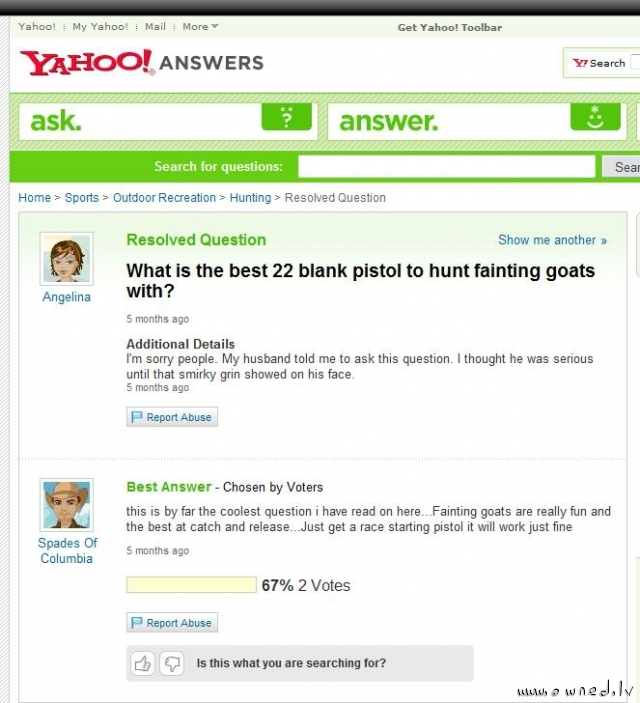 Hunting fainting goats