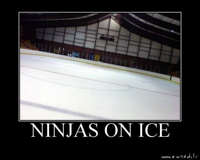 Ninjas on ice