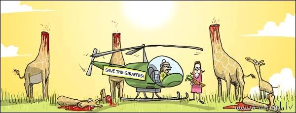 Save the giraffes