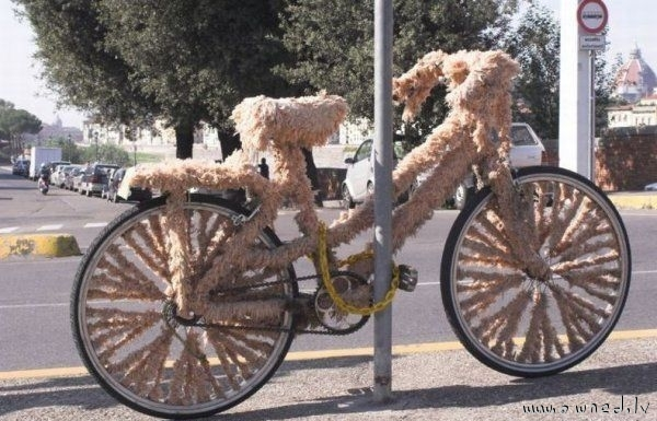 Furry bicycle
