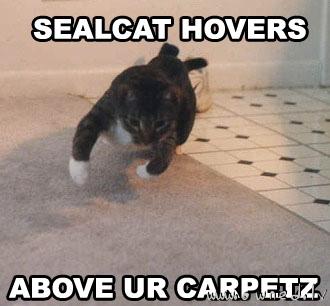 Sealcat