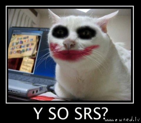 Y so srs ?