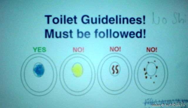 Toilet guidelines