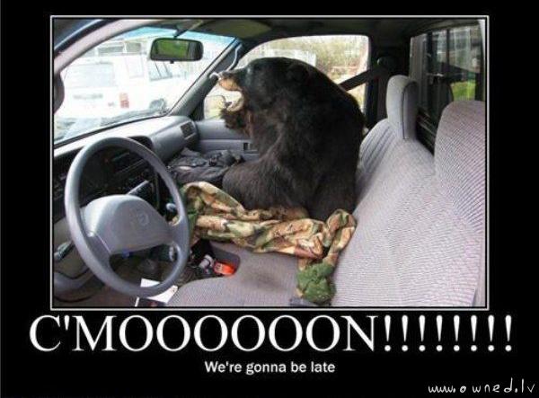 Cmooon !!!