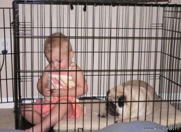 Babysitting is easy