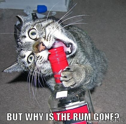 But why is the rum gone ?