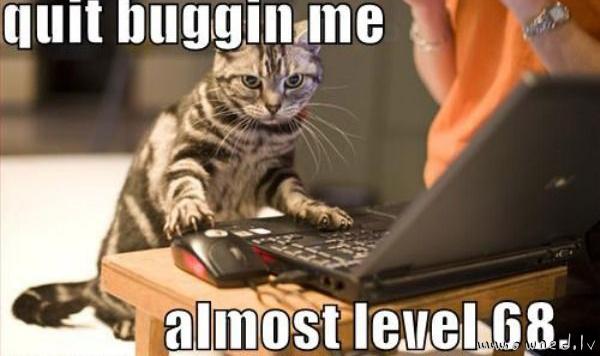 Quit buggin me