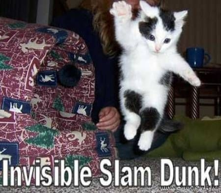 Invisible slam dunk