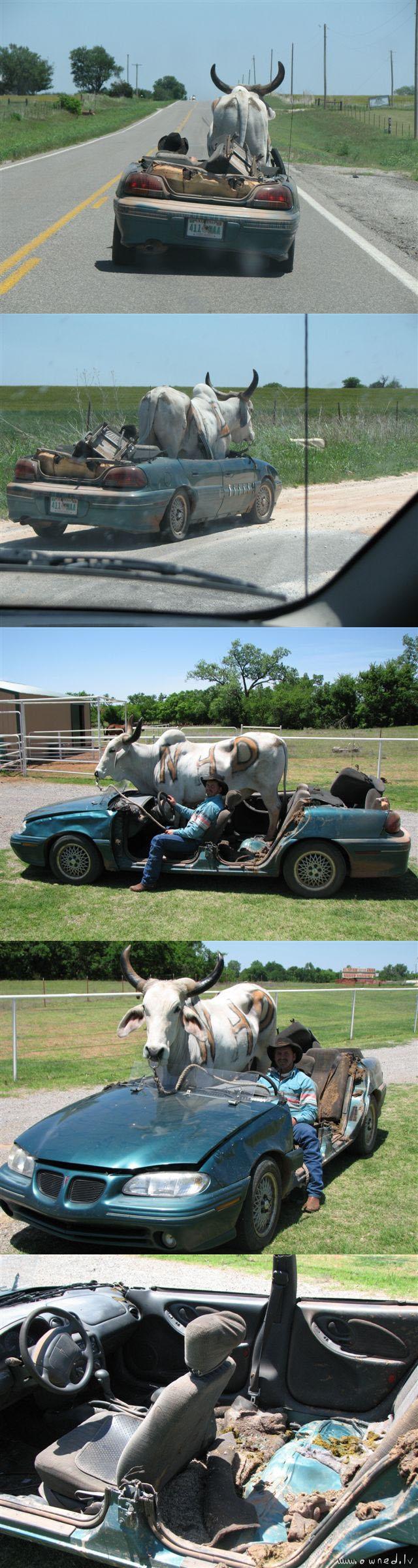 Redneck ride