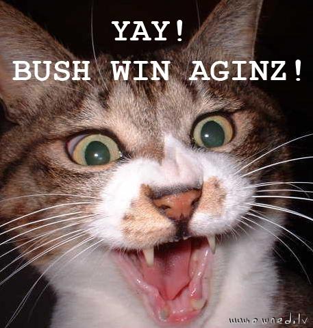 Yay! Bush win aginz