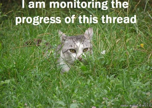 Im monitoring