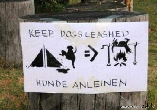 Keep dogs leashed