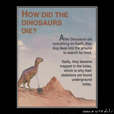 How did the dinosaurs die ?