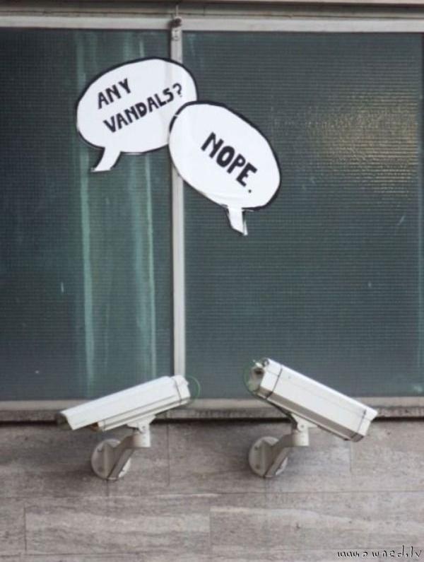 Any vandals ?