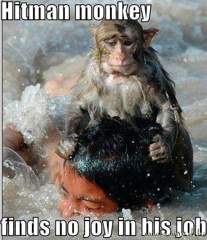 Hitman monkey