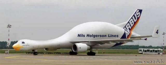 Strange plane