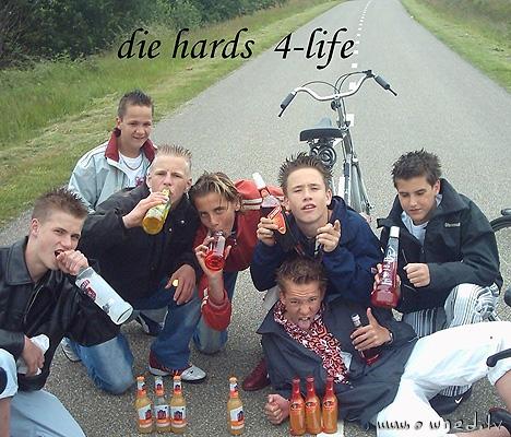 Die hards fo life