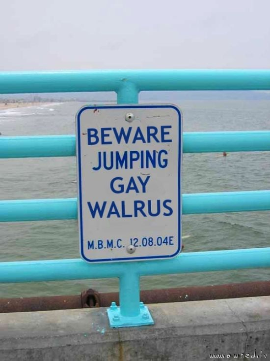 Beware jumping gay walrus