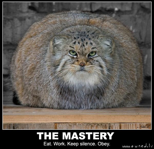 The mastery