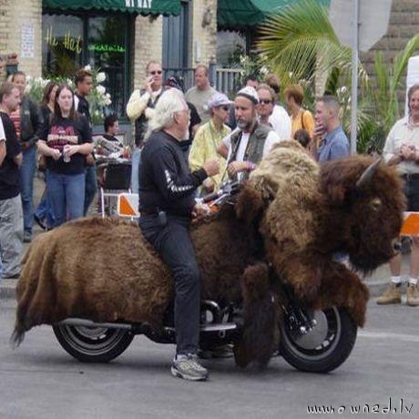 Riding the buffalo