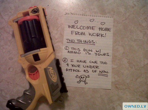 Welcome home! Watch your back!